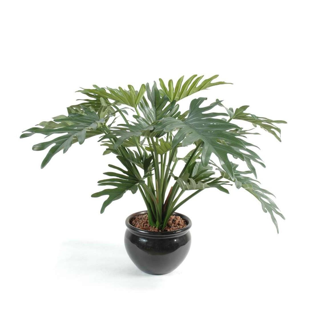 Philodendron selloum artificiel 50 cm plantes for Plantes artificielles lyon