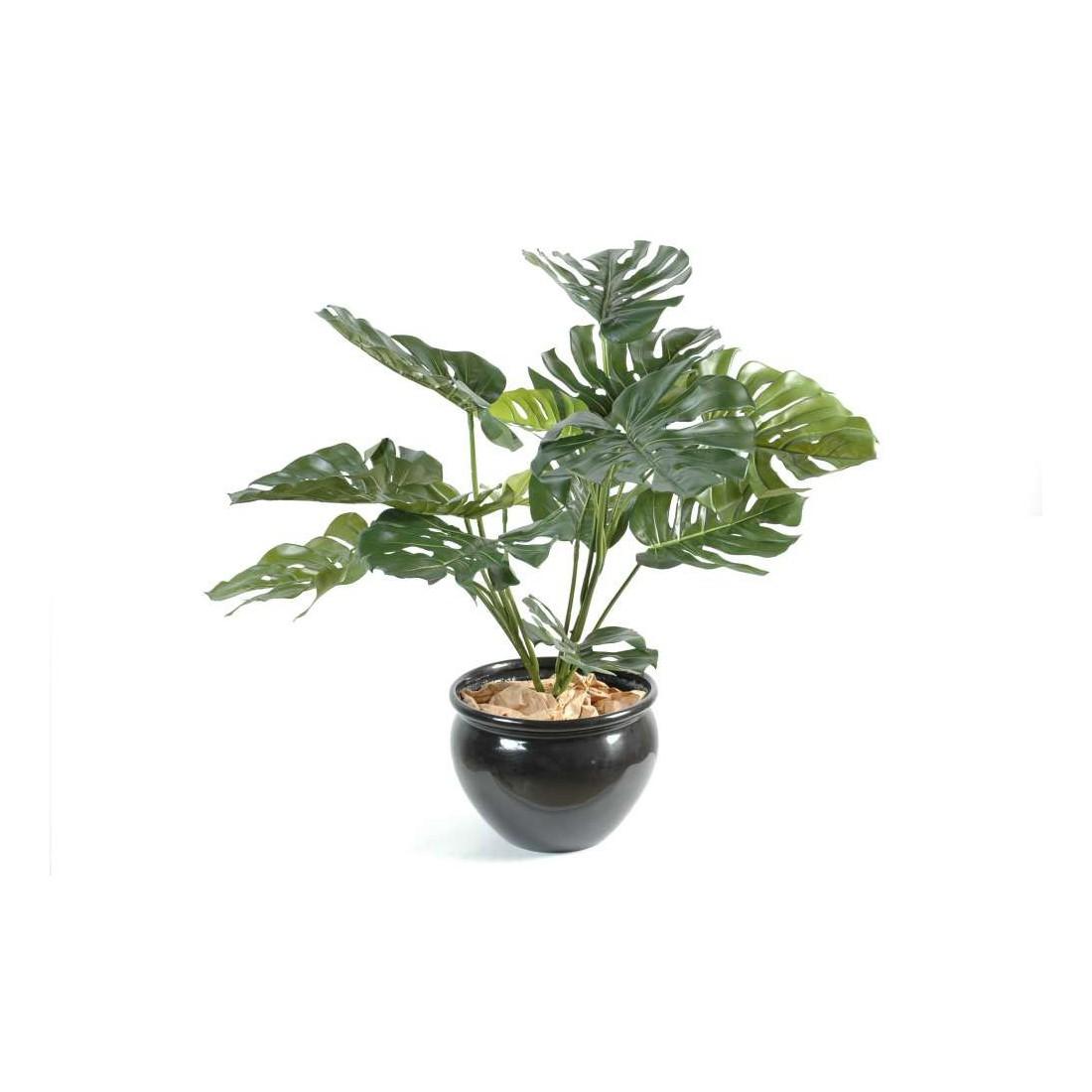 Plantes vertes artificielles lyon for Plantes vertes hautes