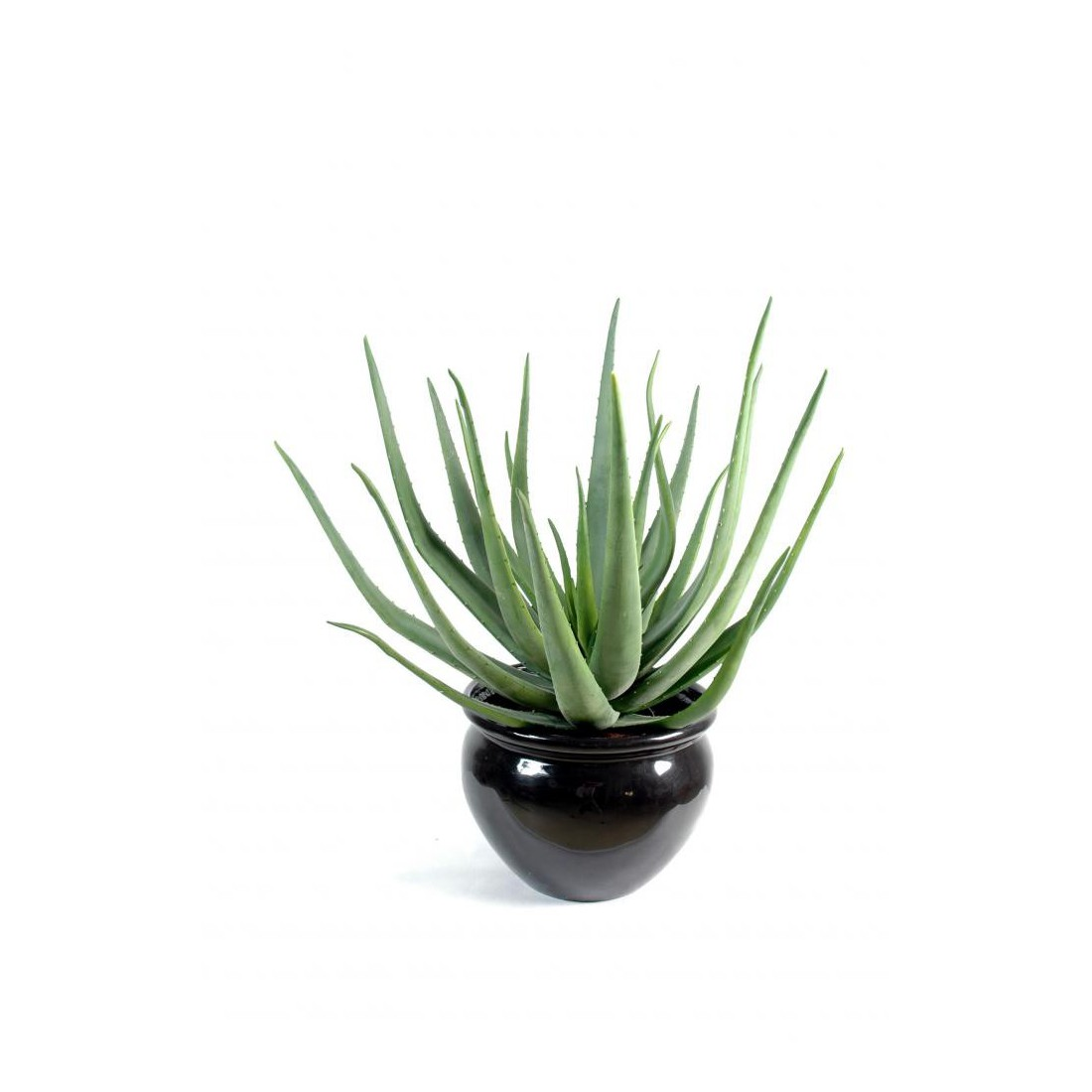aloevera artificiel 55 et 70cm cactus plantes grasses cactus et plantes grasses artificiels. Black Bedroom Furniture Sets. Home Design Ideas