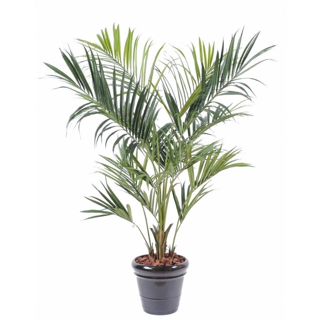 Kentia artificiel royal 180 et 220 cm arbres exotiques for Arbre palmier artificiel
