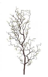 Branche Tortuosa 108 cm