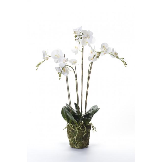 composition Phalaenopsis ORCHIDEE artificielle 95 cm blanc
