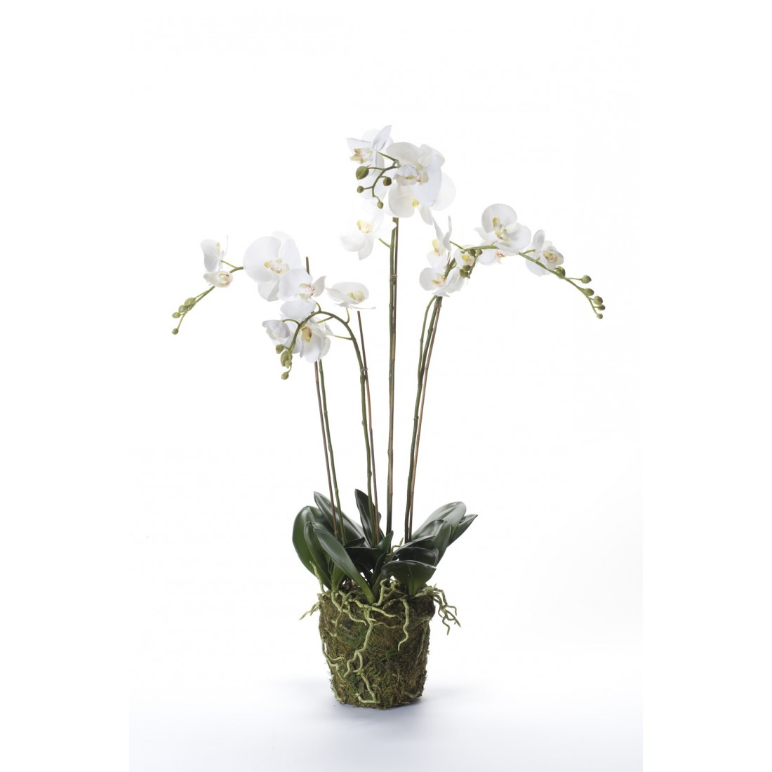 composition phalaenopsis orchidee artificielle 95 cm blanc orchid es en pot ou en motte. Black Bedroom Furniture Sets. Home Design Ideas