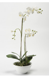 composition Phalaenopsis ORCHIDEE artificielle EN POT 90 cm blanc