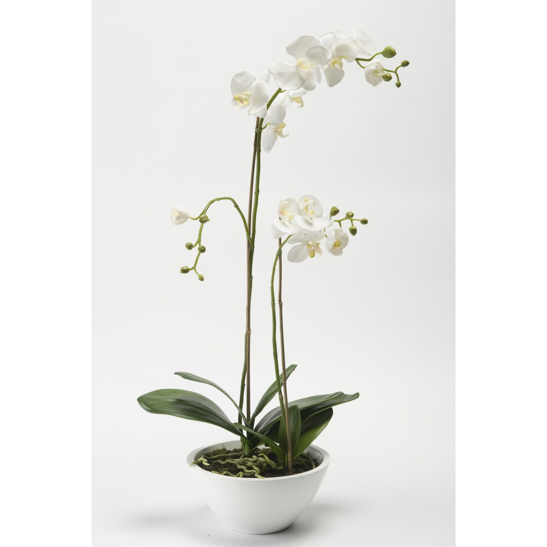 composition phalaenopsis orchidee artificielle en pot 90 cm blanc compositions artificielles. Black Bedroom Furniture Sets. Home Design Ideas