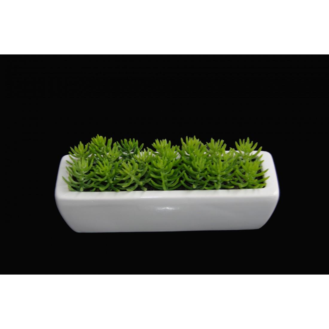 jardini re crassula tetragona artificiel 18 cm mini cactus plantes grasses artificiels. Black Bedroom Furniture Sets. Home Design Ideas