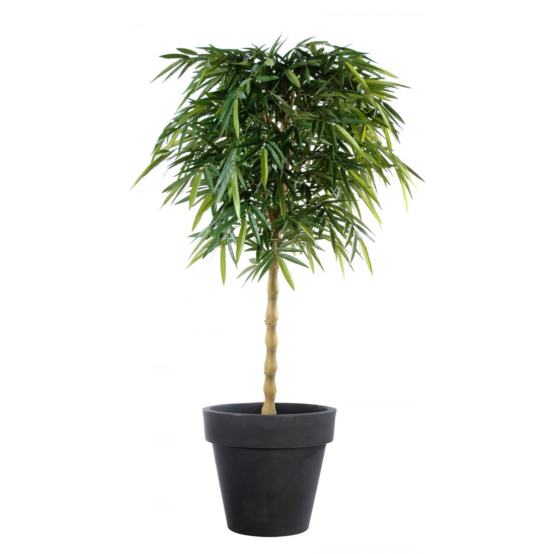 Bambou artificiel new bouddha 180 et 210cm arbres for Arbre bambou artificiel