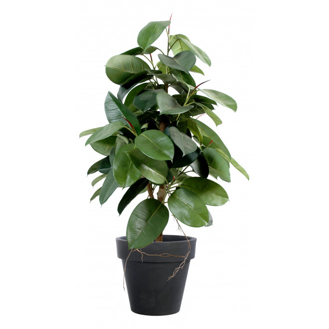 FICUS artificiel ELASTICA (Rubber plant tree) 110 à 180 cm