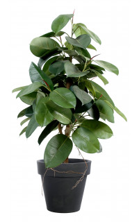 FICUS artificiel ELASTICA (Rubber plant tree) 110 à 180 cm