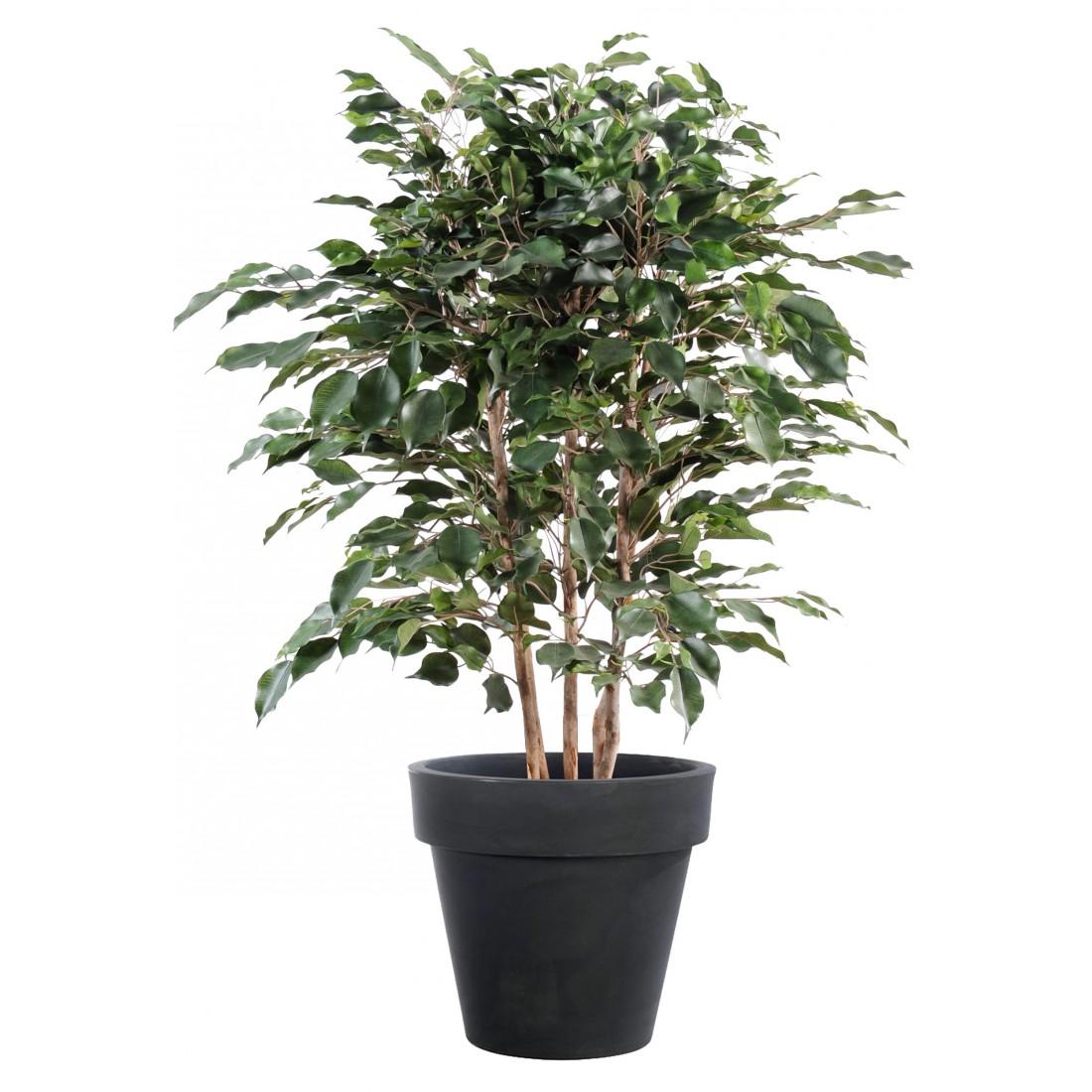 Ficus artificiel exotica buisson 80 et 110 cm arbres for Buisson synthetique