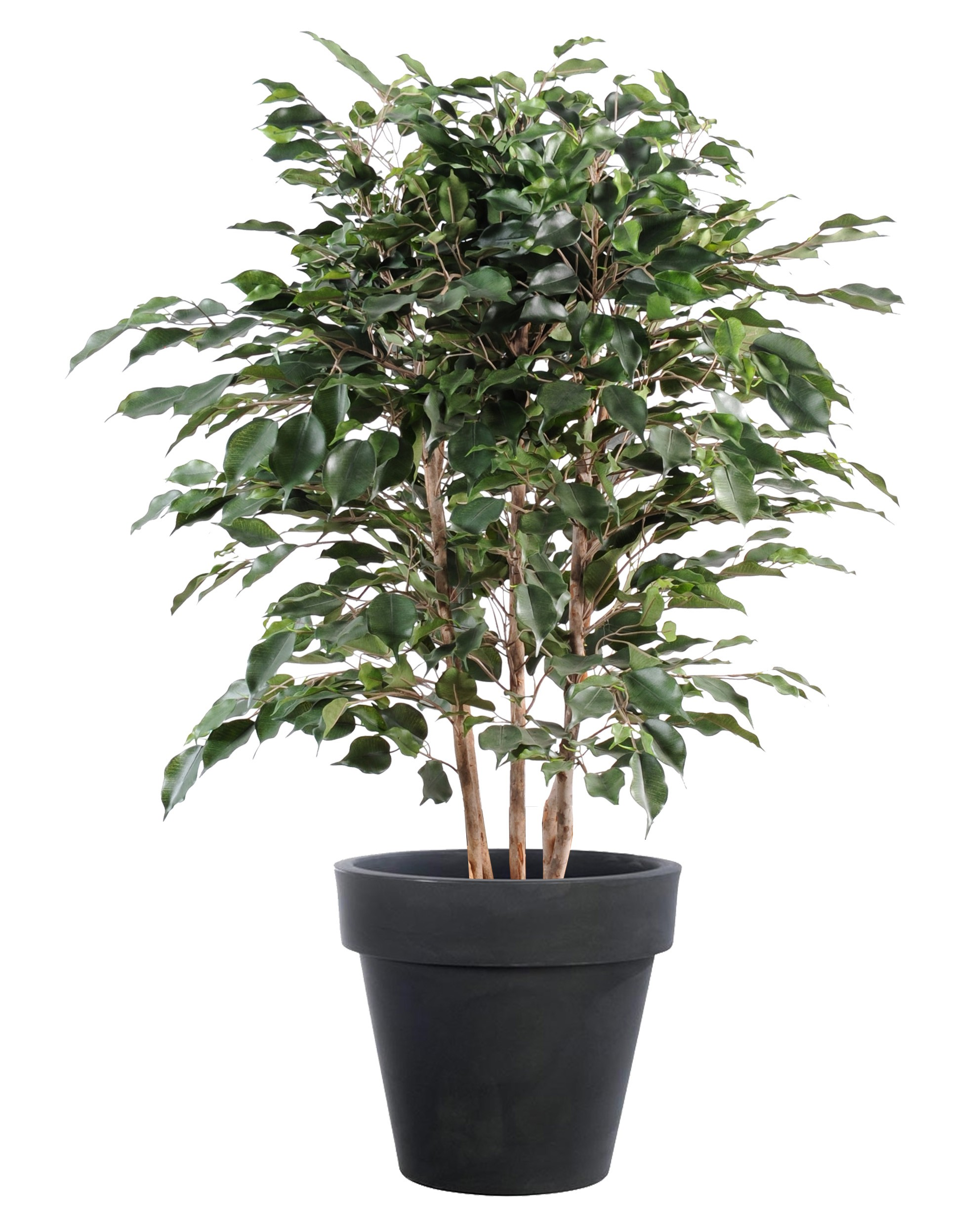 Ficus Artificiel-110cm
