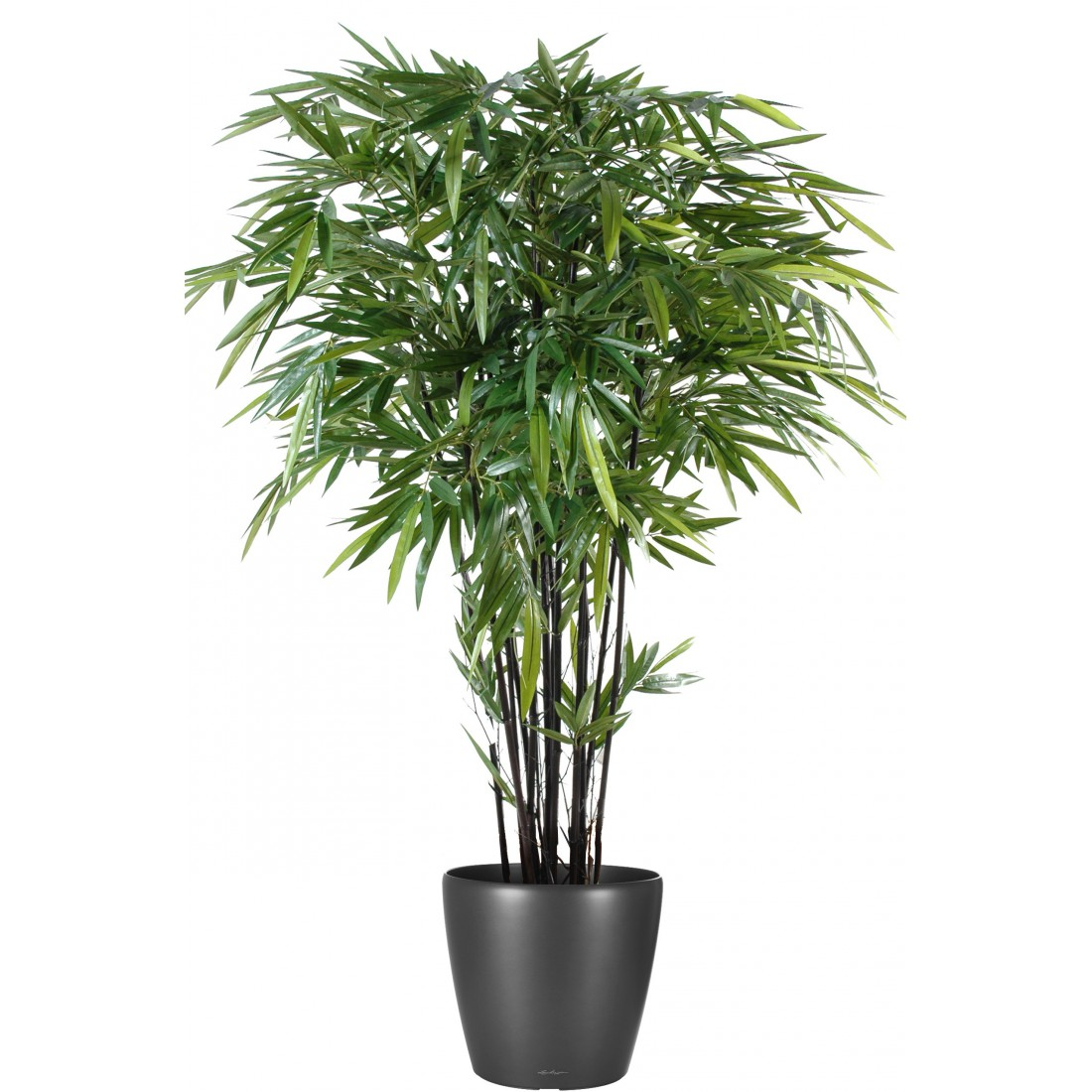 Pot plante tube paul atylia accessoires d co for Bambous artificiels exterieur