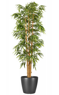 Bambous artificiel vente d 39 arbres et de plantes for Grande plante interieur pas cher