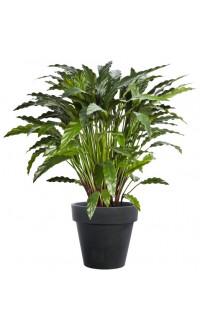 plantes vertes artificielles plantes artificielles reflets nature vente plantes artificielles. Black Bedroom Furniture Sets. Home Design Ideas