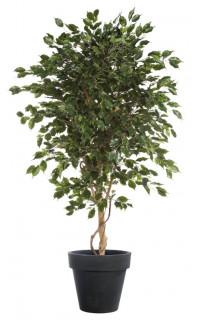 FICUS artificiel EXOTICA arbre de luxe. . . . 150 à 240 cm