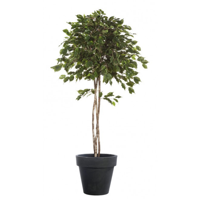 FICUS artificiel EXOTICA umbrella. . . . . . . 150 à 210 cm