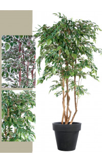 FICUS artificiel multitree NATASJA . . . . . . . 110 à 240 cm