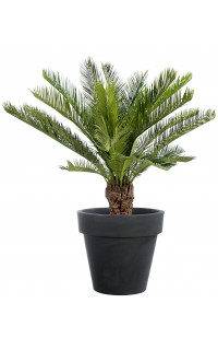 Arbres artificiels reflets nature vente plantes artificielles - Arrosage palmier en pot ...