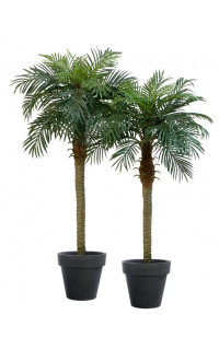 Phoenix artificiel palm 150 et 180 cm