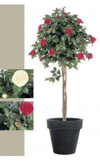 CAMELIA artificiel UMBRELLA TREE 130 et 160 cm