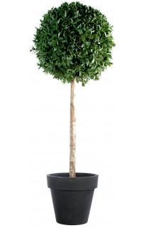 laurier artificiel arbres et arbustes artificiels. Black Bedroom Furniture Sets. Home Design Ideas
