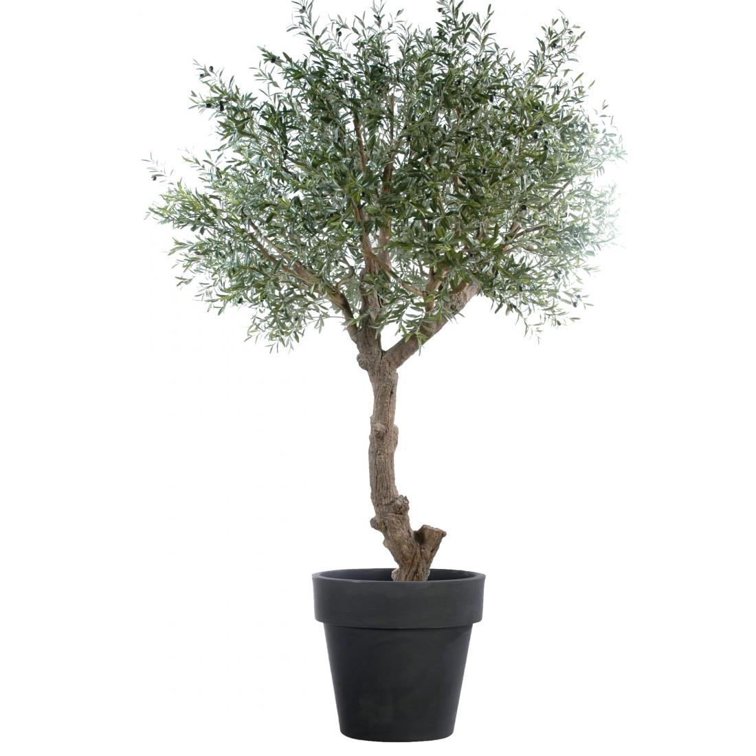 Olivier artificiel new tete g ant 270 cm olive noire for Arbre factice