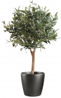 OLIVIER artificiel NEW arbre boule 90 cm