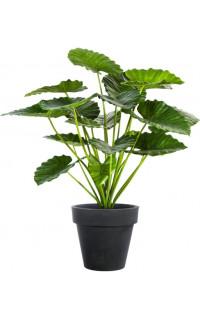 Alocasia Calidora Bush artificiel 75 et 95 cm