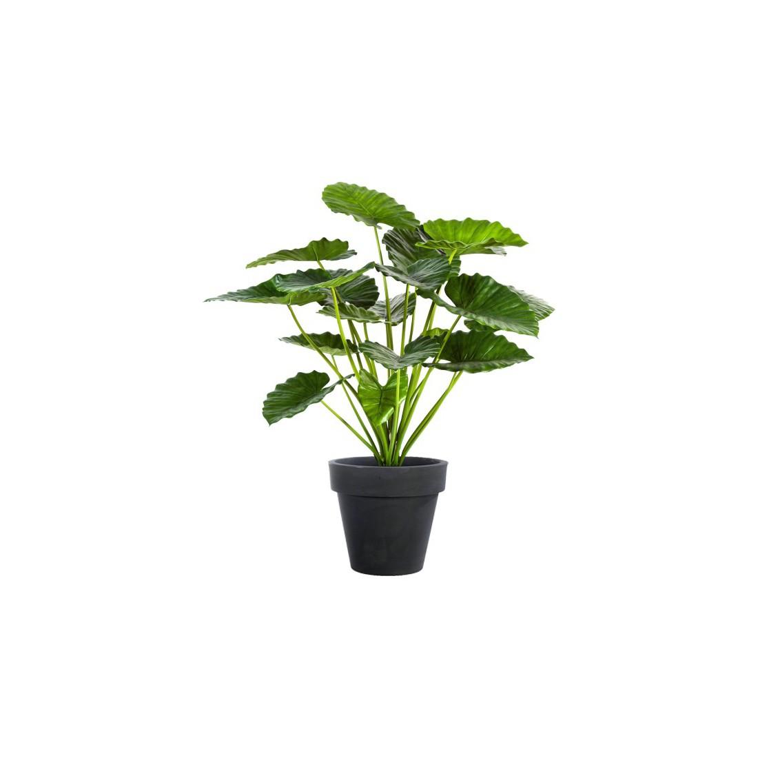 Alocasia calidora bush artificiel 75 et 95 cm arbres for Plantes exotiques artificielles
