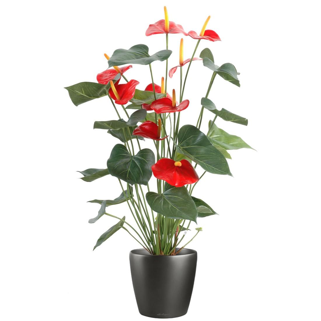 Petites Plantes Fleuries En Pot anthurium rouge en pot 75 cm plantes artificielles, plantes