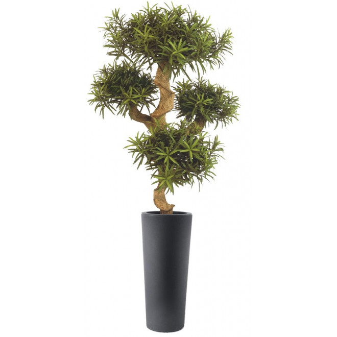 PODOCARPUS artificiel MOUNTAIN tree 110 cm