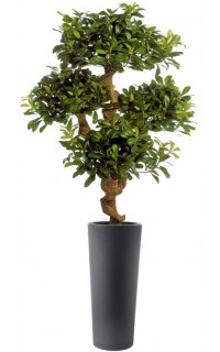 PITTOSPORUM artificiel MOUNTAIN tree ou Pittosporum montagne 120 cm