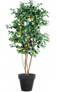 CITRONNIER artificiel New .......150 et 180 cm