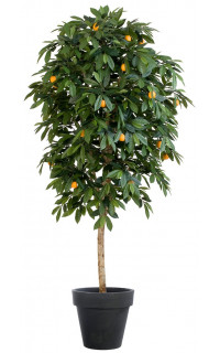 MANDARINIER artificiel arbre . . . . . . . .  110 à 170 cm