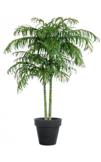ARECA artificiel PALM DE LUXE x 2 troncs 210 et 240 cm