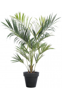 KENTIA artificiel ROYAL 180 et 220 cm