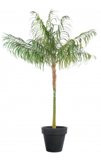 ARECA artificiel PALM 100 et 210 cm