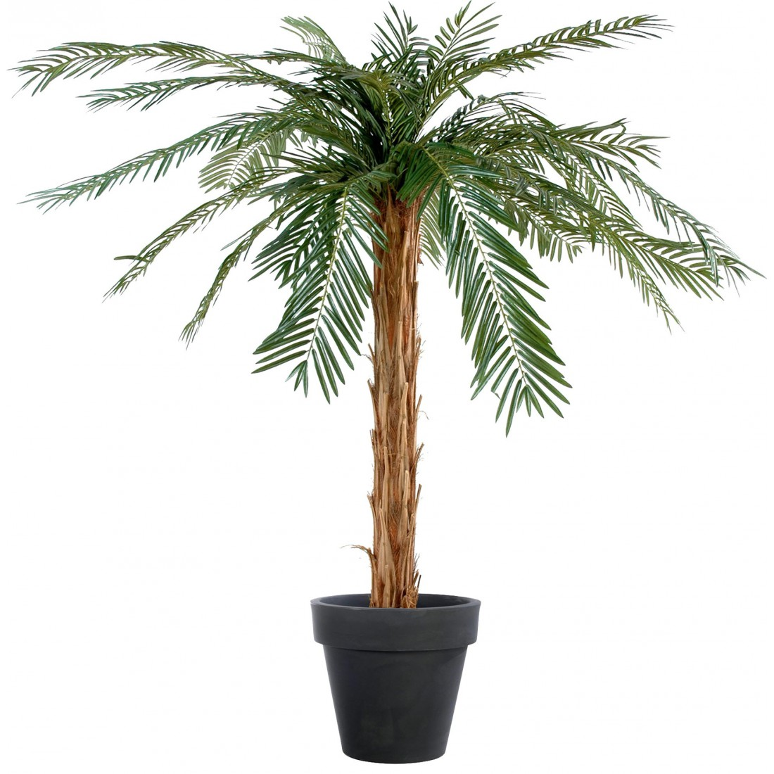 Palmier cycas artificiel