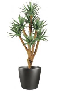 AGAVE artificiel arbre 70 cm