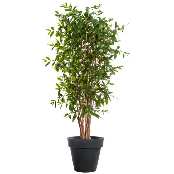 Dracena artificiel ou dracaena surculosa arbre 90 270 for Arbre factice
