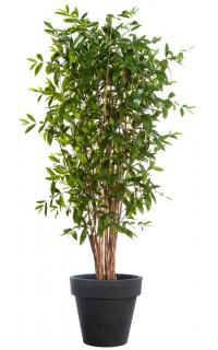 DRACENA artificiel (ou DRACAENA) SURCULOSA arbre 90 à 270 cm