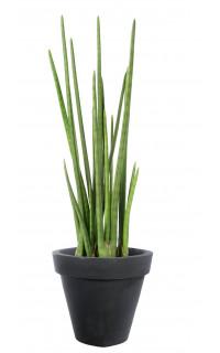composition cactus artificiels plante artificielle reflets nature. Black Bedroom Furniture Sets. Home Design Ideas