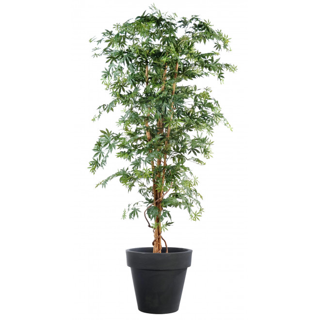 ARALIA artificiel DE LUXE (Erable)  150 à 210 cm