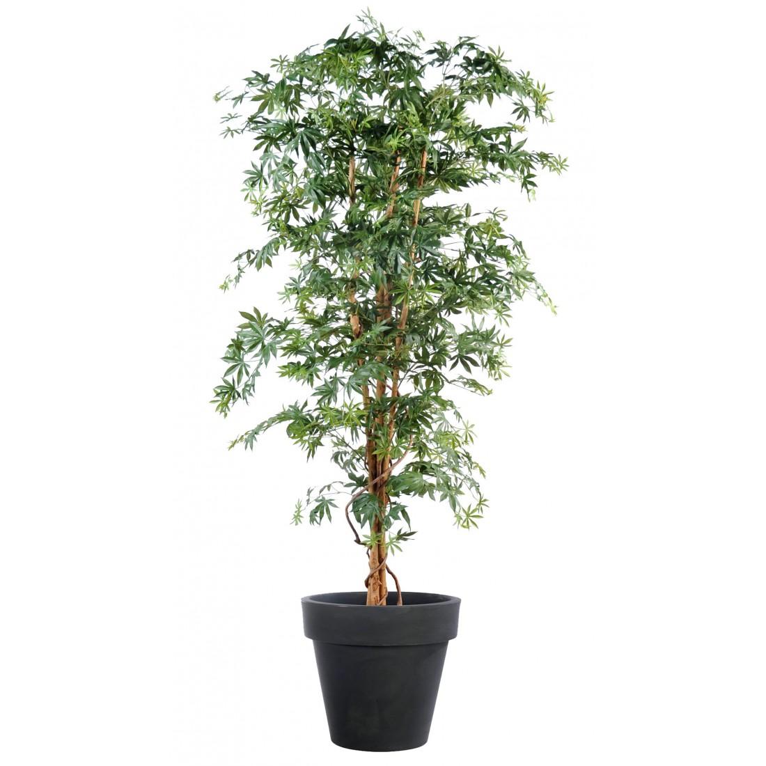aralia artificiel de luxe erable 150 210 cm autres arbres reflets nature lyon. Black Bedroom Furniture Sets. Home Design Ideas