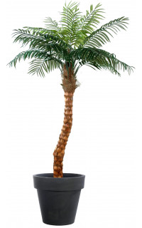 COCONUT artificiel TREE BENDED 240 cm
