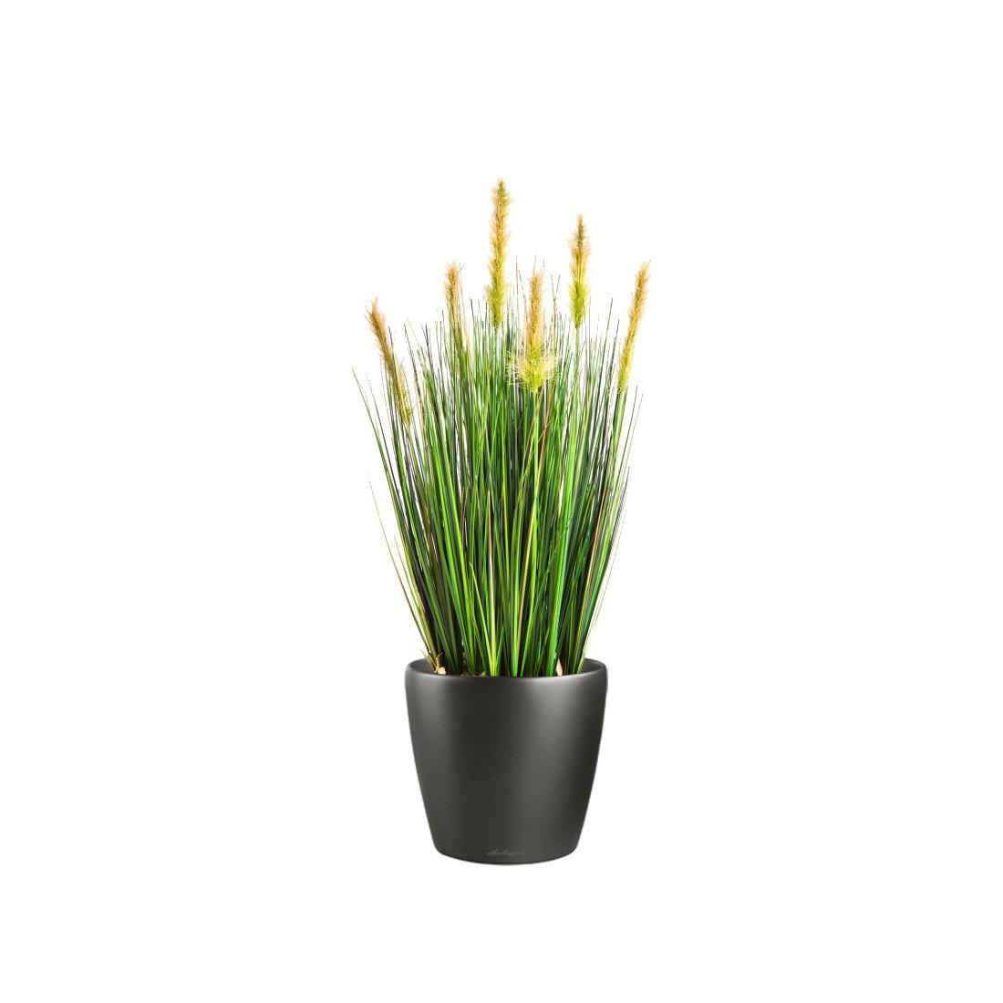 herbe artificielle foxtail 60 et 90 cm fleurs des champs artificielles refle. Black Bedroom Furniture Sets. Home Design Ideas