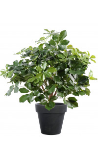 SCHEFFLERA artificiel BUISSON 90 cm