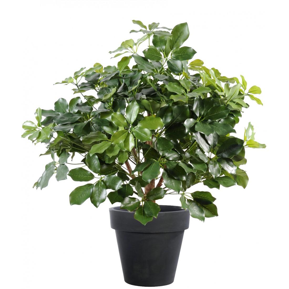 Schefflera artificiel exotica buisson 90 cm autres arbres for Buisson synthetique