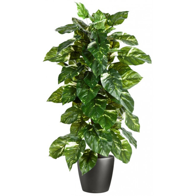 Pothos artificiel en pot 120 cm