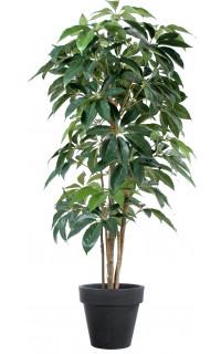 SCHEFFLERA artificiel actinophylla 150 à 210 cm